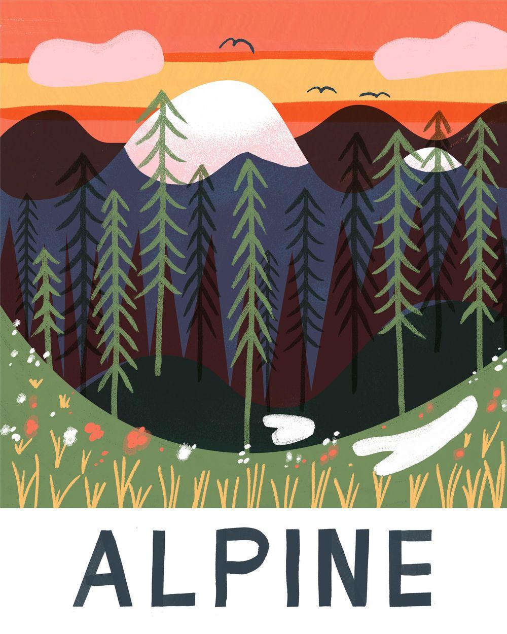Alpine excersice - image 1 - student project