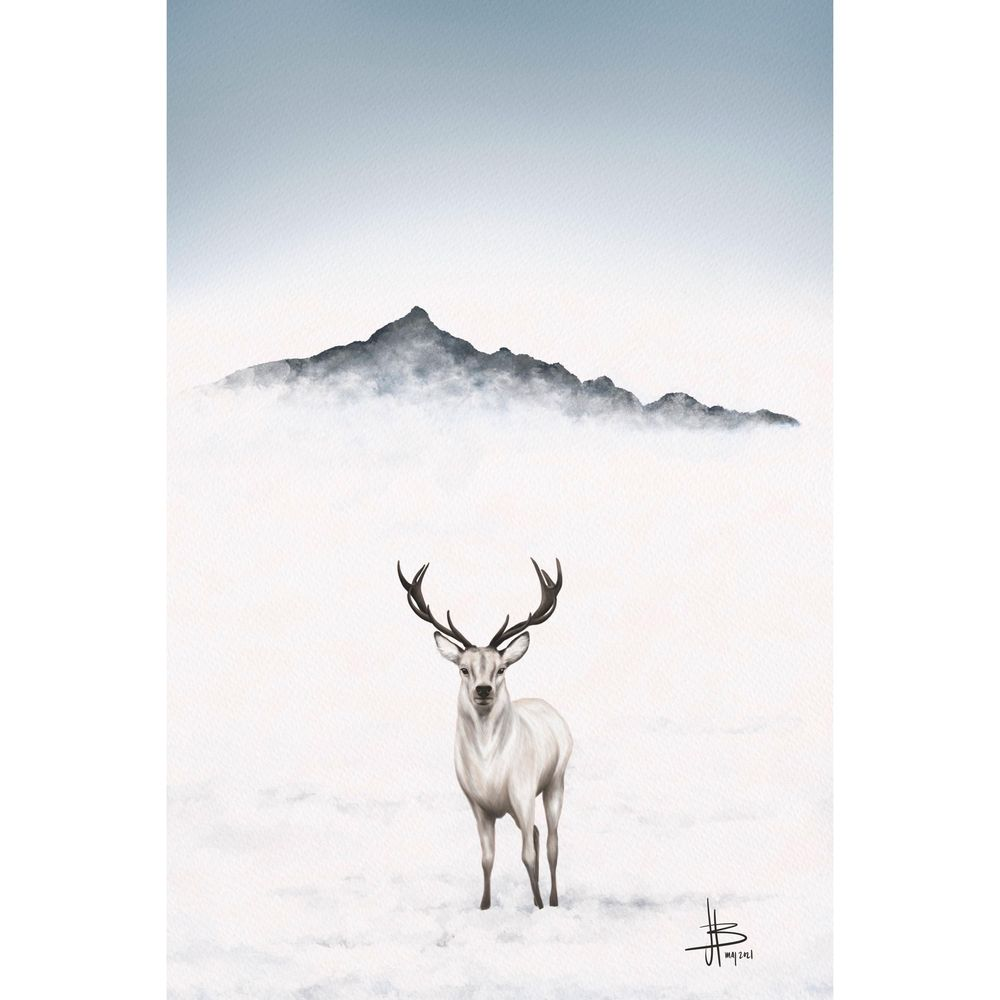 Mountain deer - image 1 - student project