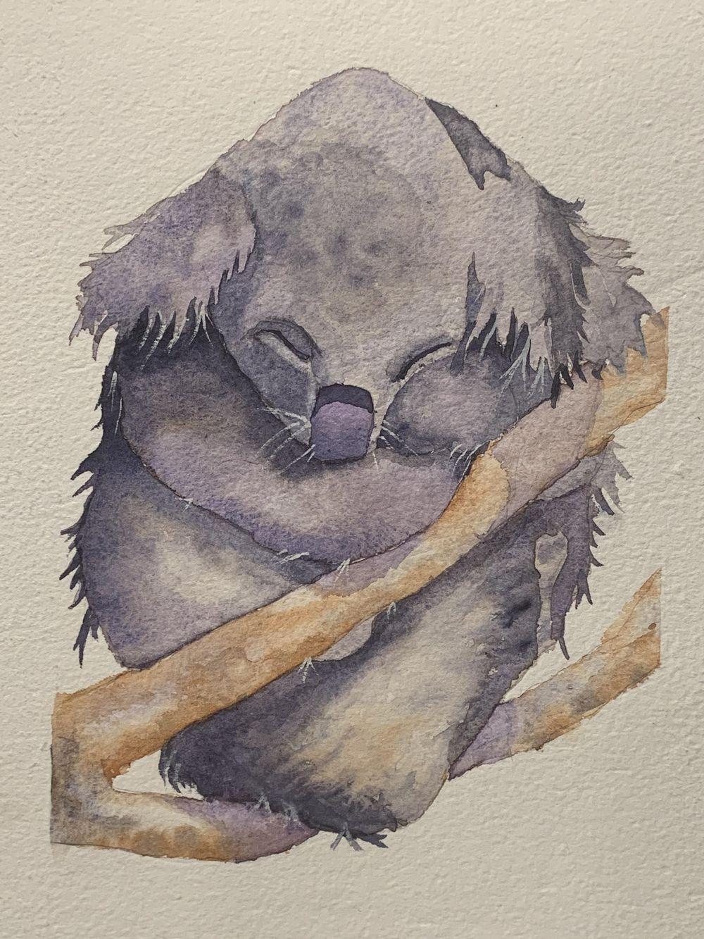 Koala - image 1 - student project