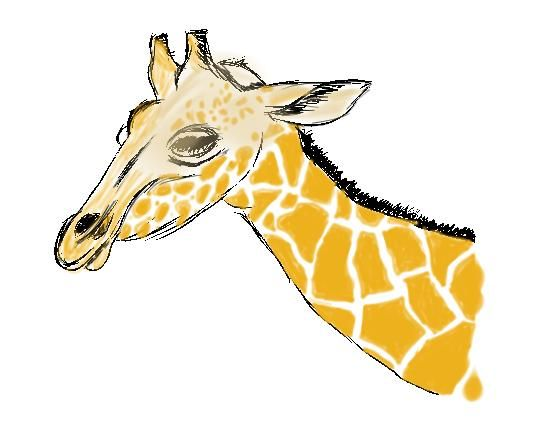 Die Giraffe - image 1 - student project