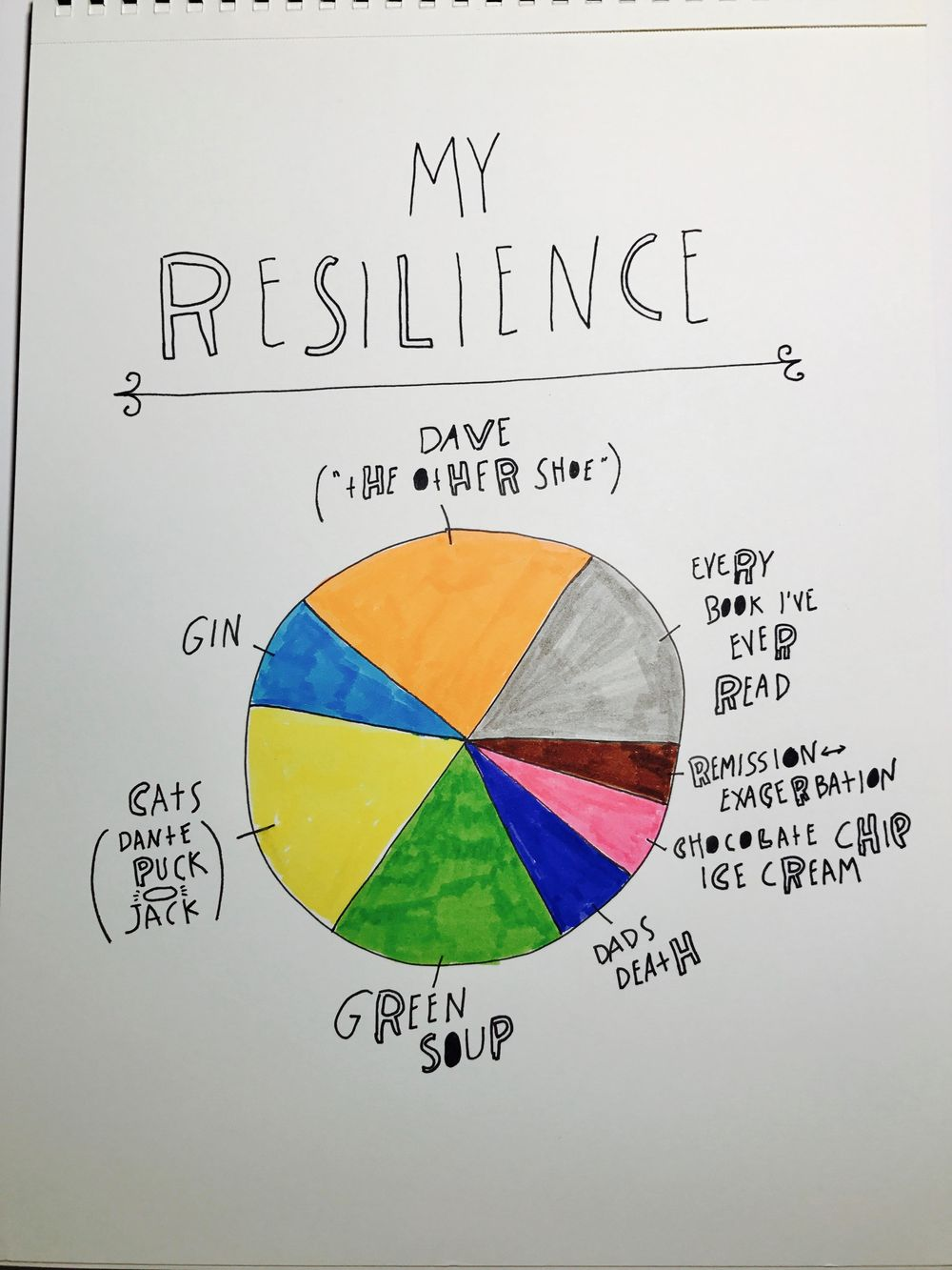 My Resilience Pie - image 1 - student project
