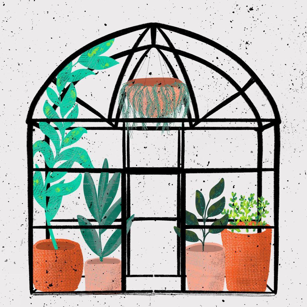 Green house - image 2 - student project