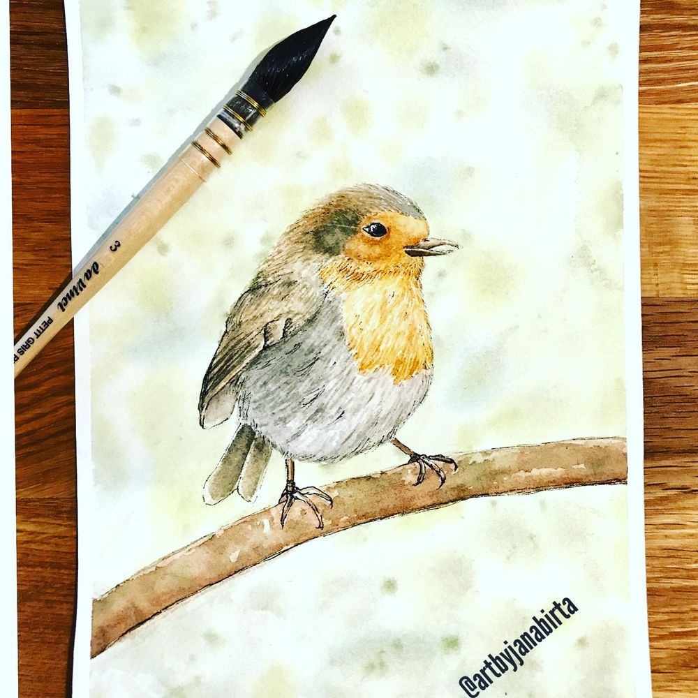 Basic Watercolor & Ink Illustration: Songbirds - image 3 - student project