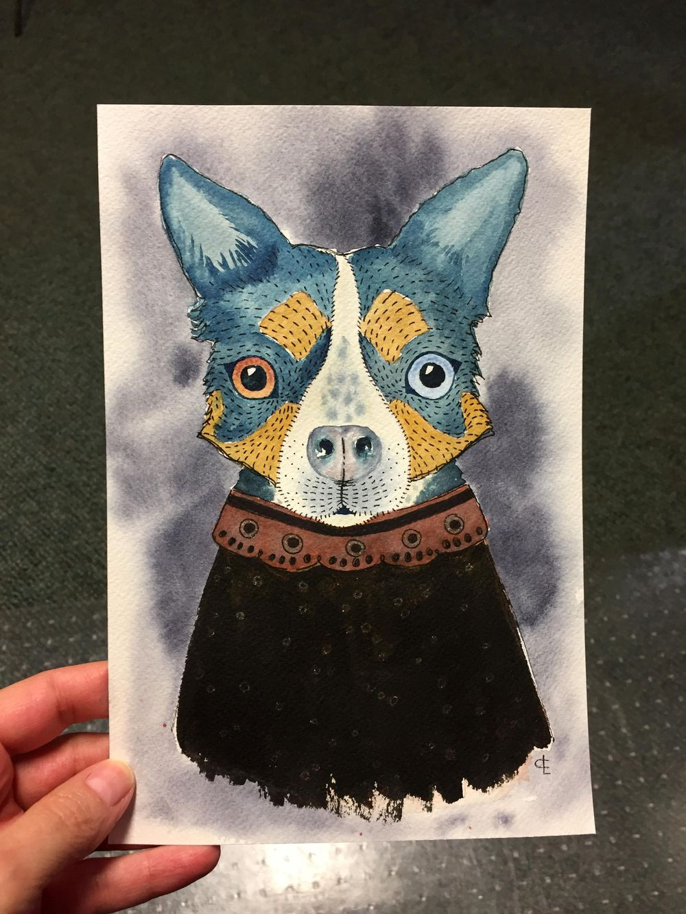 My Dog: Boo - image 1 - student project
