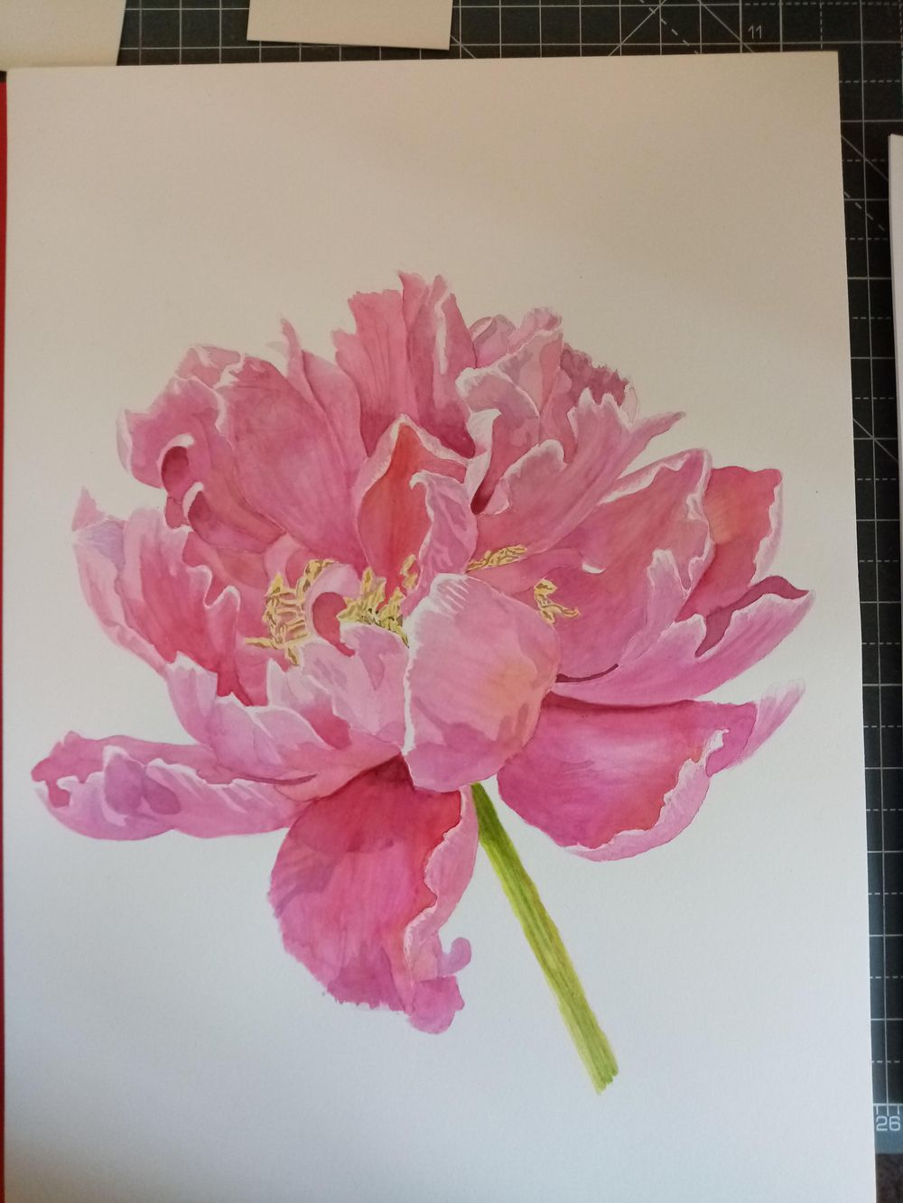 Watercolour Peony - image 1 - student project