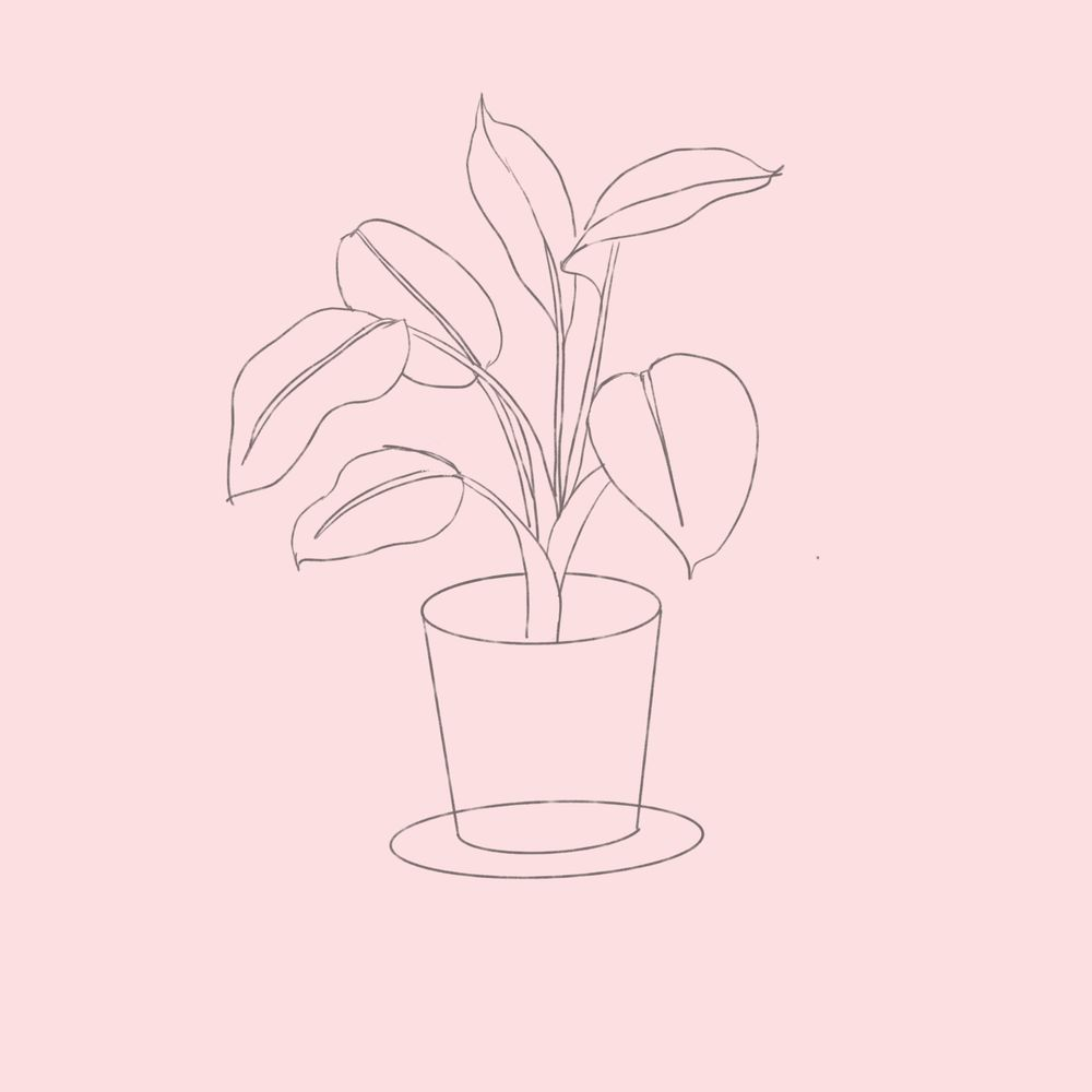 House plant - image 2 - student project