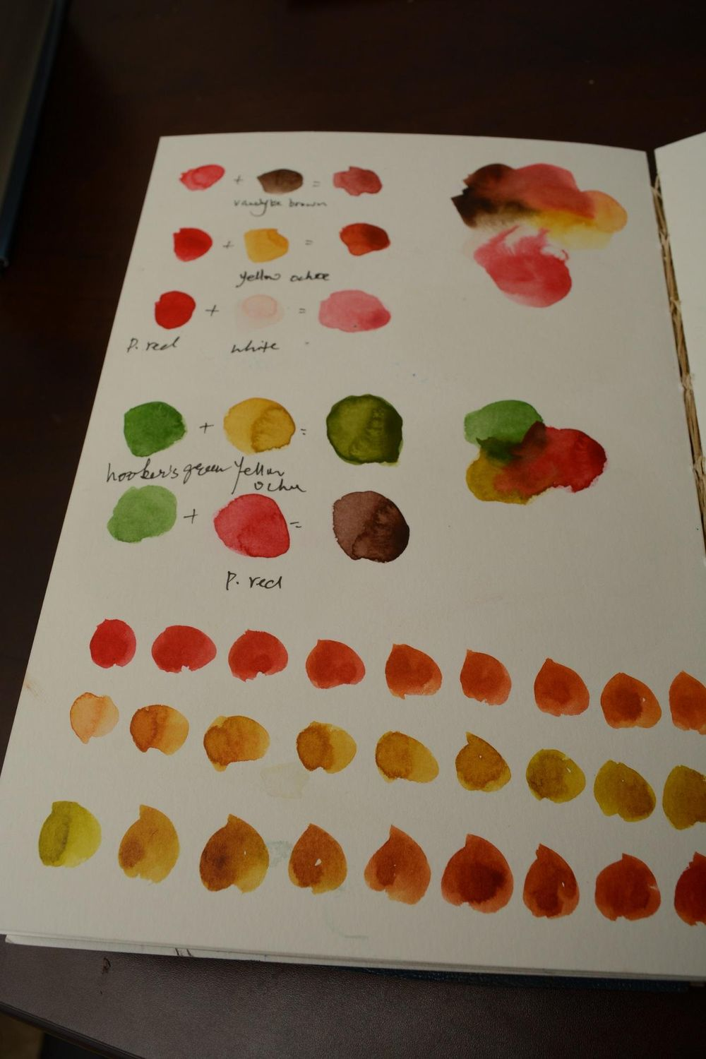 20 Shades of Peach - image 1 - student project
