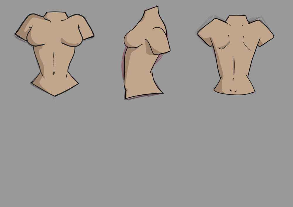 Female Torso Practice - image 1 - student project