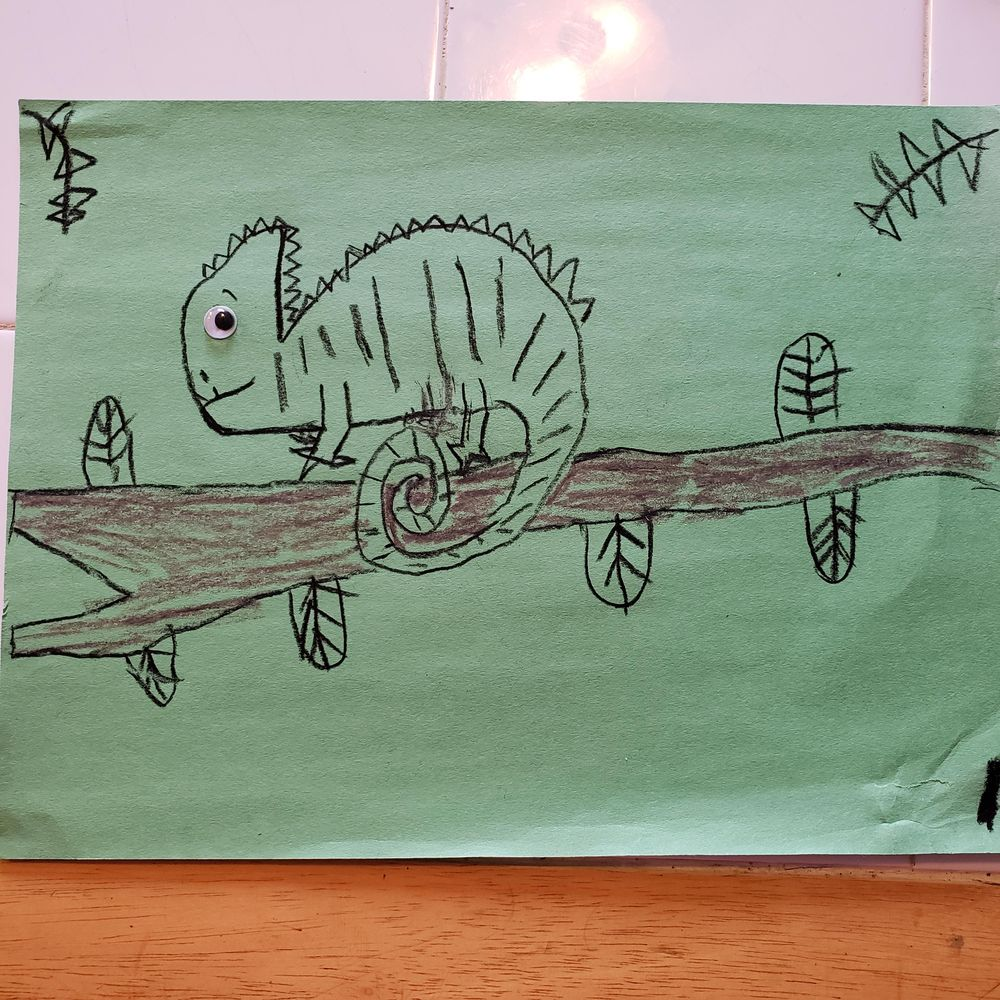 Jaiden 9 - Chameleon with baby / Logan 11 - Chameleon - image 3 - student project