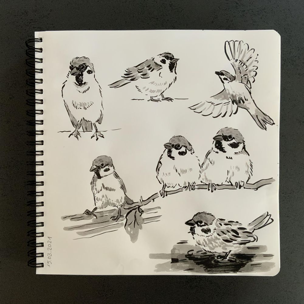 Having fun with my sketchbook - image 4 - student project
