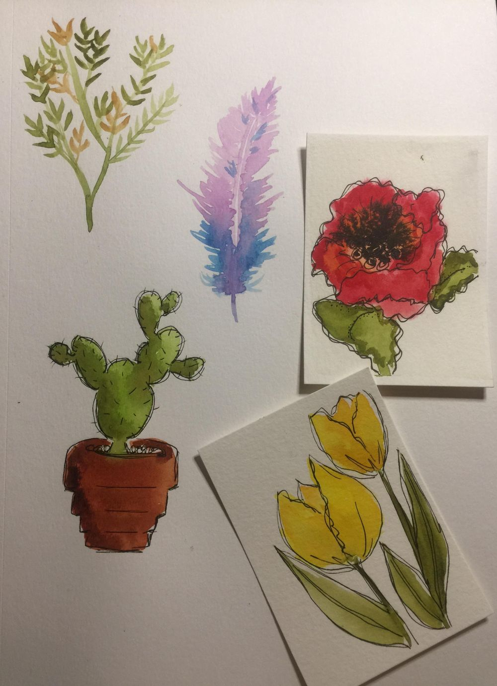 Watercolor Examples - image 1 - student project