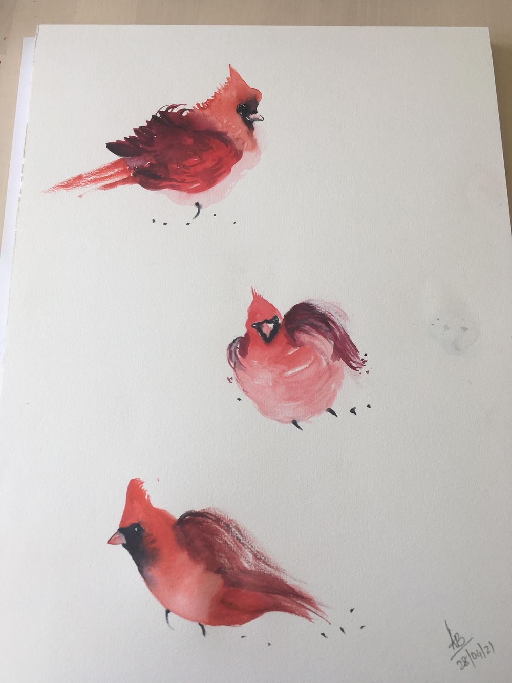 3 Vertical  Cardinal - image 1 - student project