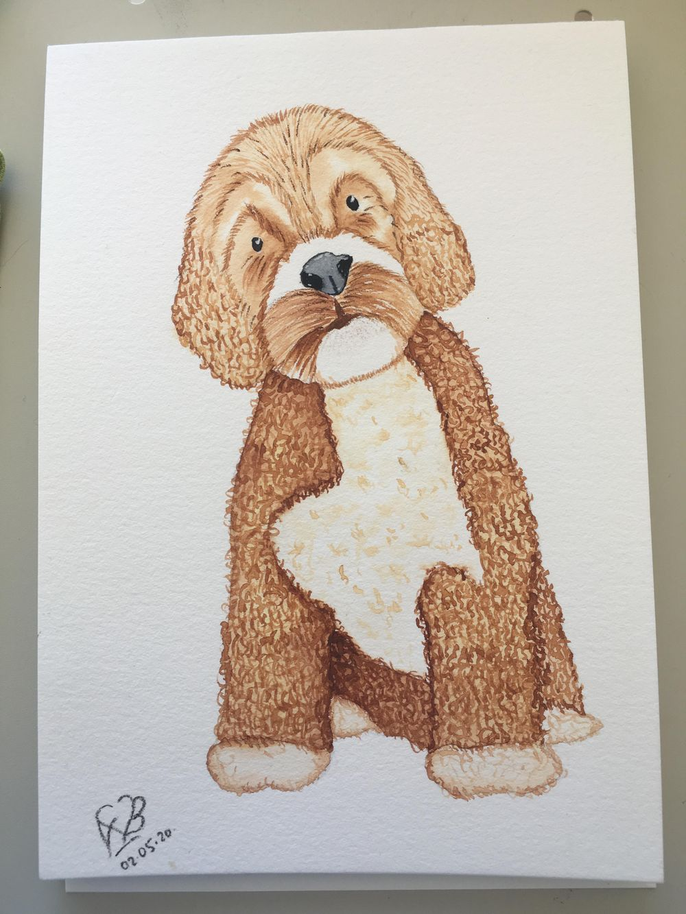 Little bit too brown puppy - image 1 - student project