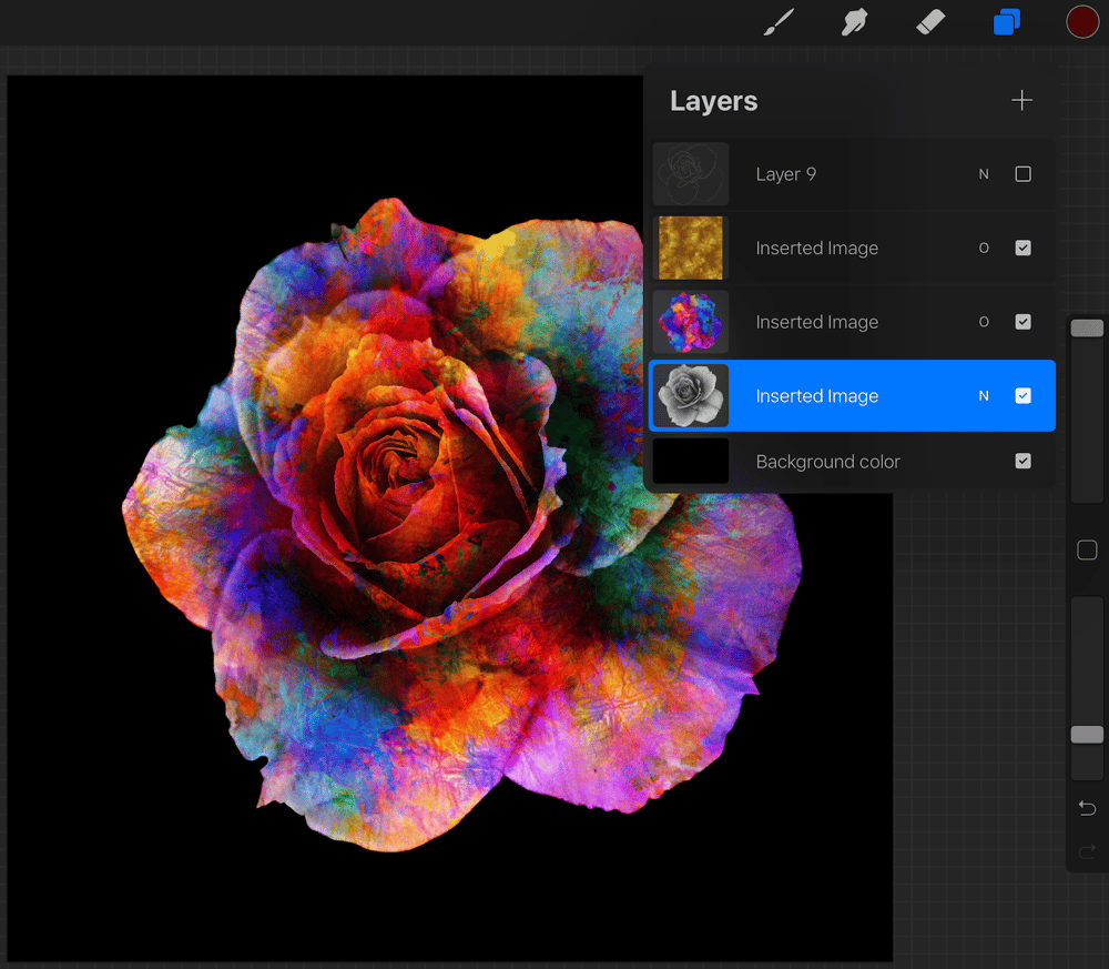 Colourful rose - image 3 - student project
