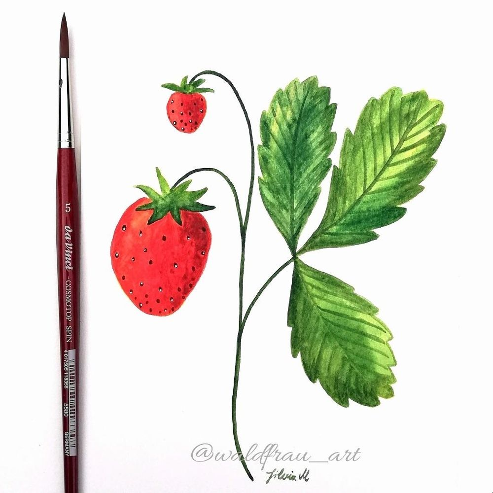 fun strawberry painting - image 1 - student project