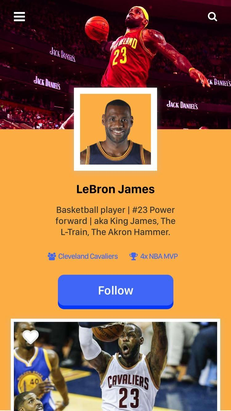 LeBron James - User Profile - image 7 - student project