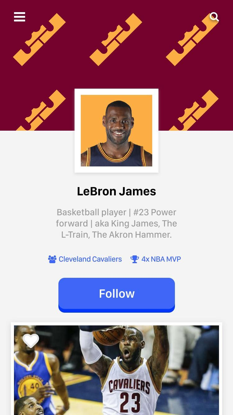 LeBron James - User Profile - image 8 - student project