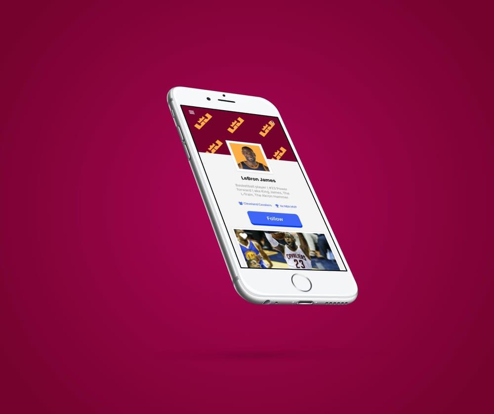 LeBron James - User Profile - image 9 - student project