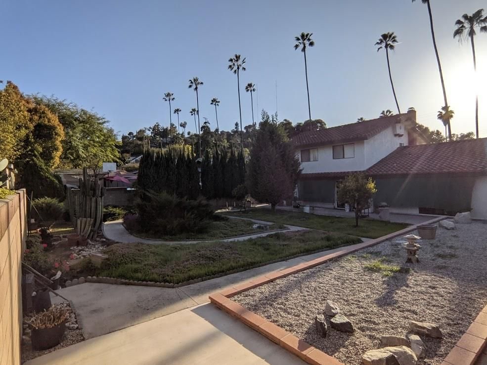 My Backyard - image 2 - student project