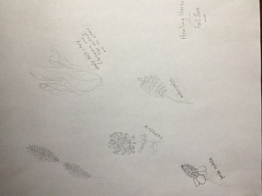 Illustrate from Sketches: Inspiration Board - image 3 - student project
