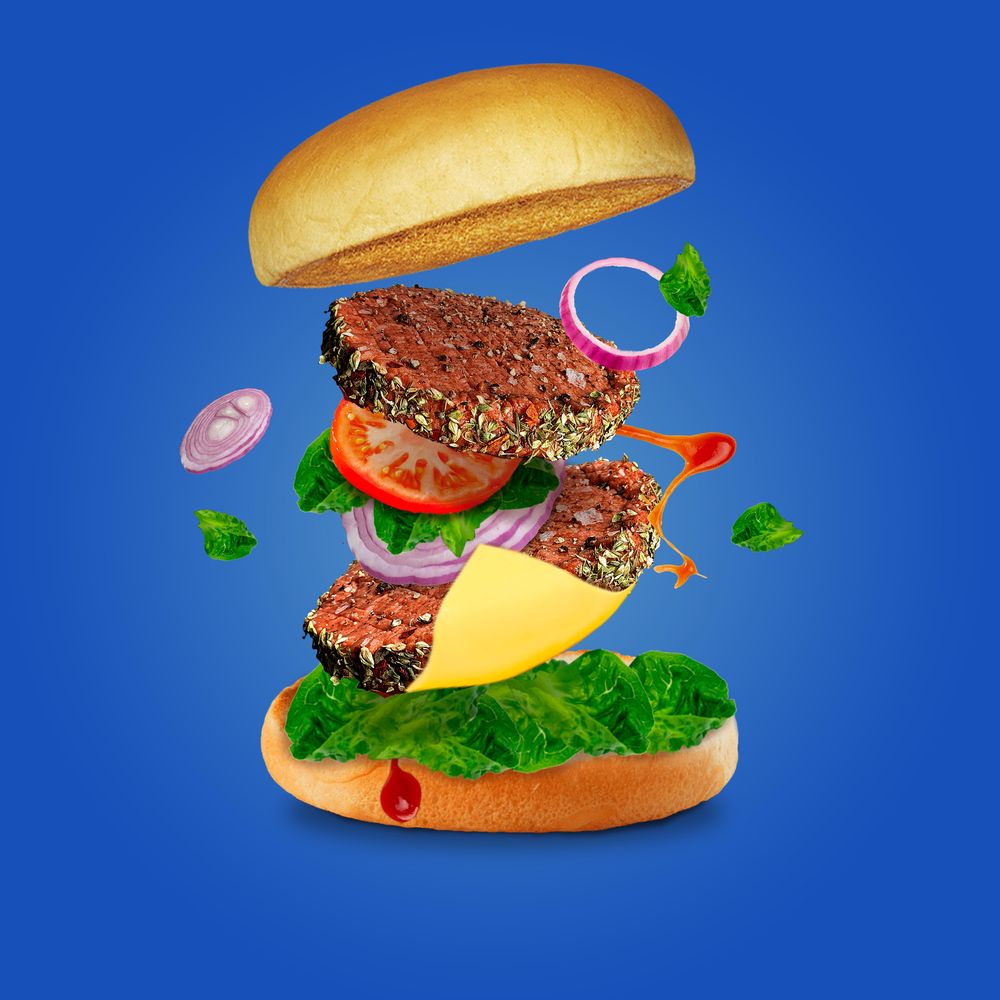 vegan burger - image 1 - student project