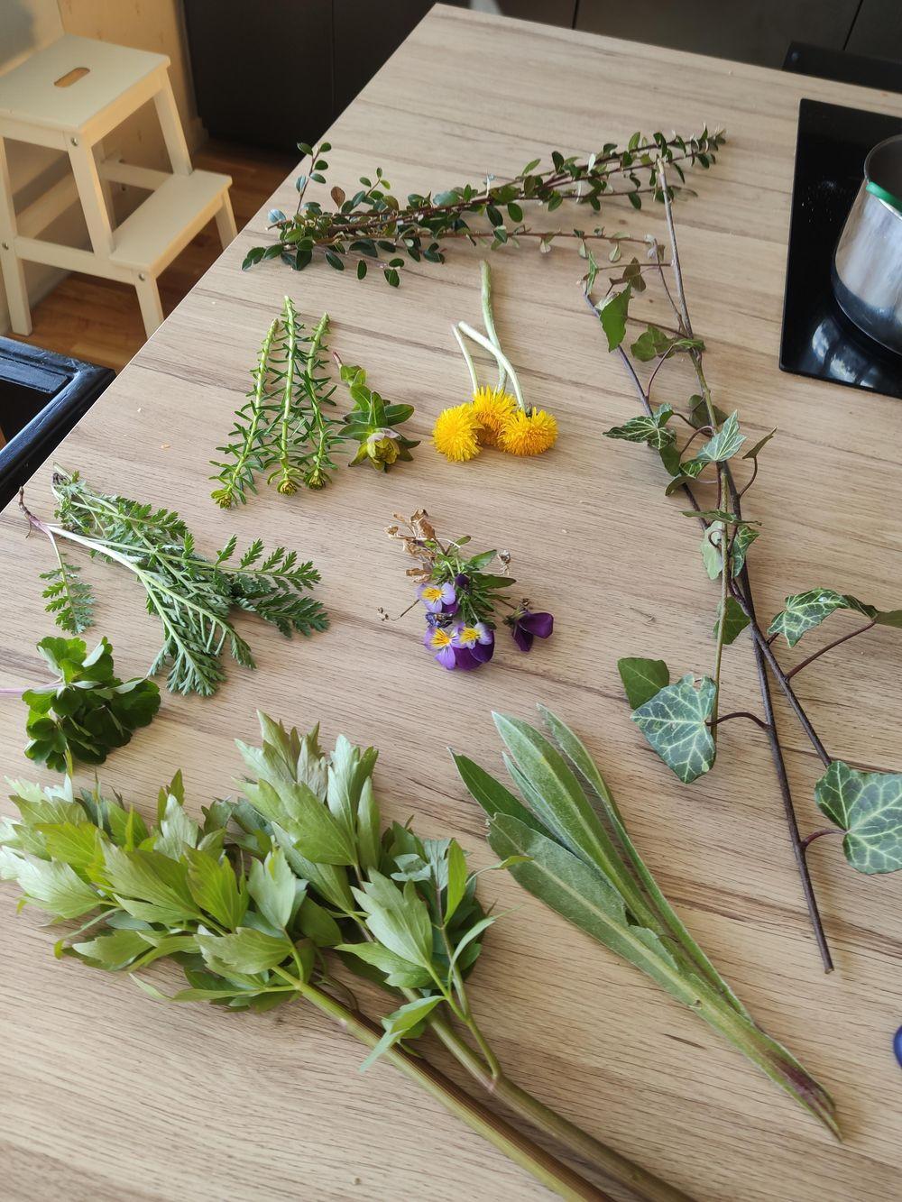 Spring arrangement - image 1 - student project