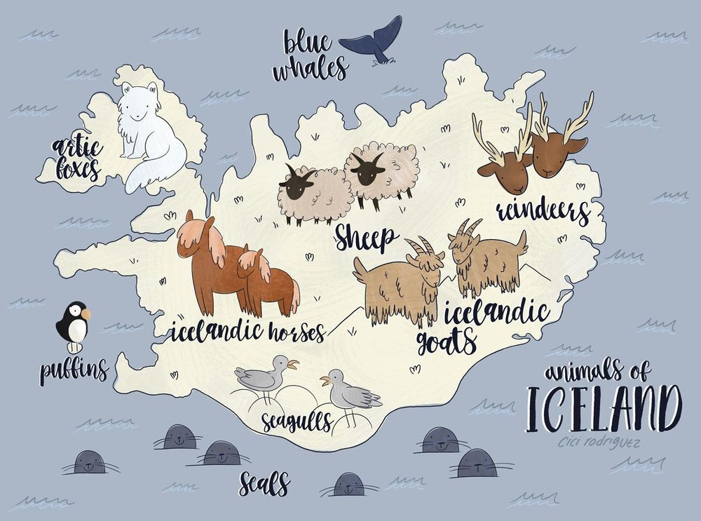 It's Iceland! But... Animal Edition! - image 1 - student project