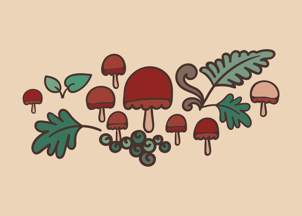 Mushroom Forest - image 4 - student project