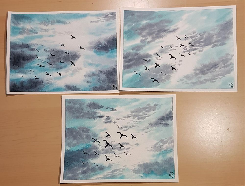 Skies, Clouds, and Birds - image 5 - student project