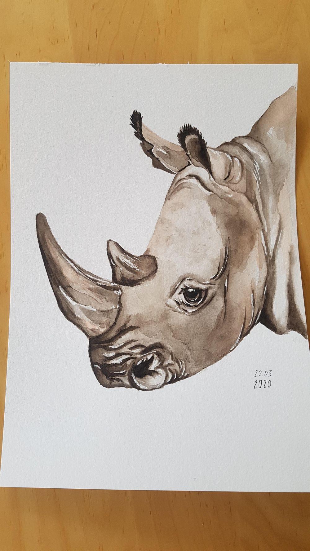 Rhinoceros - image 1 - student project