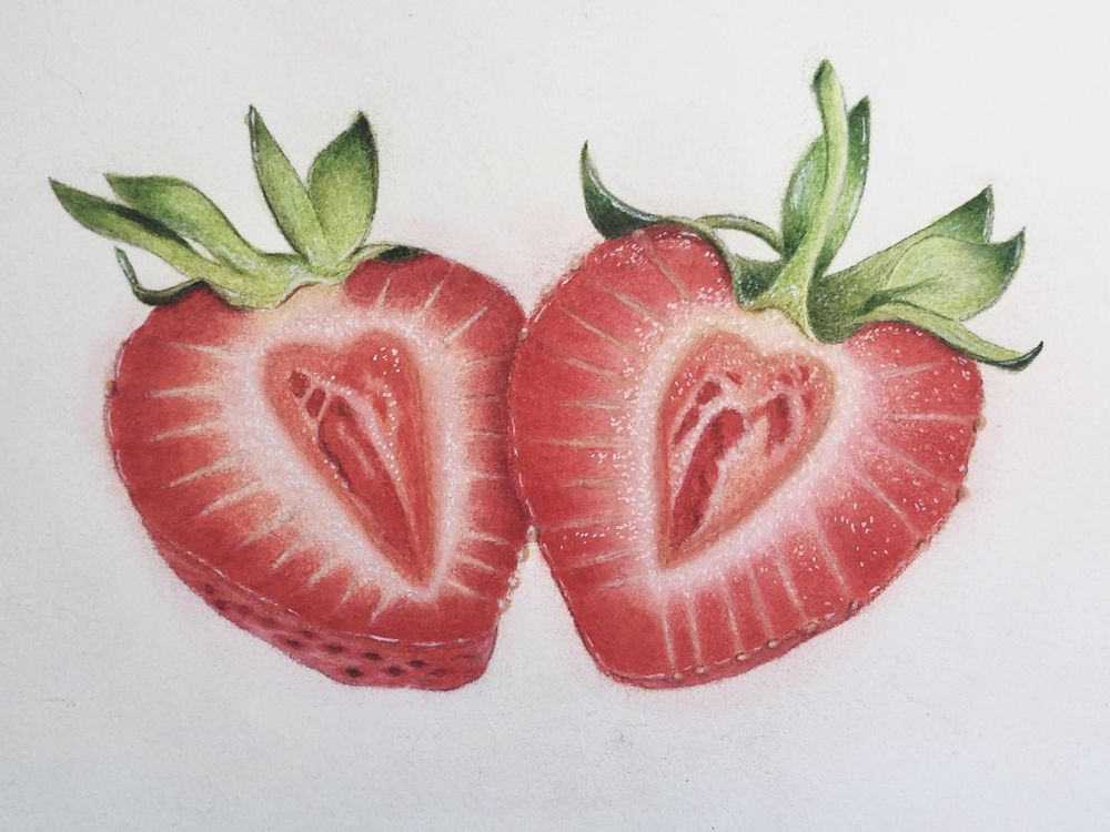 Strawberries in Colored Pencil - image 5 - student project