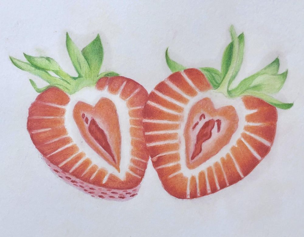 Strawberries in Colored Pencil - image 4 - student project