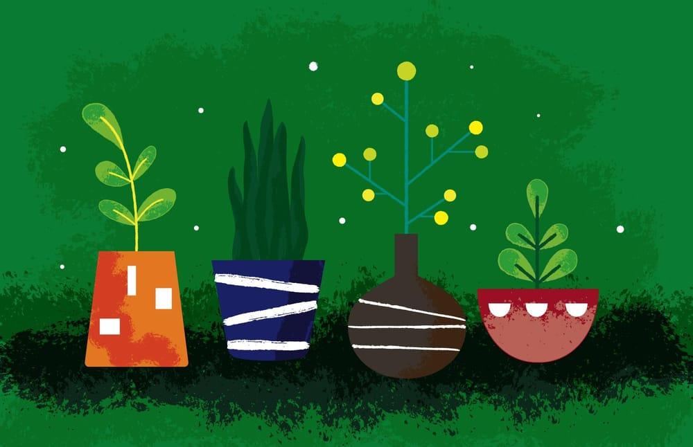 Plants - image 2 - student project