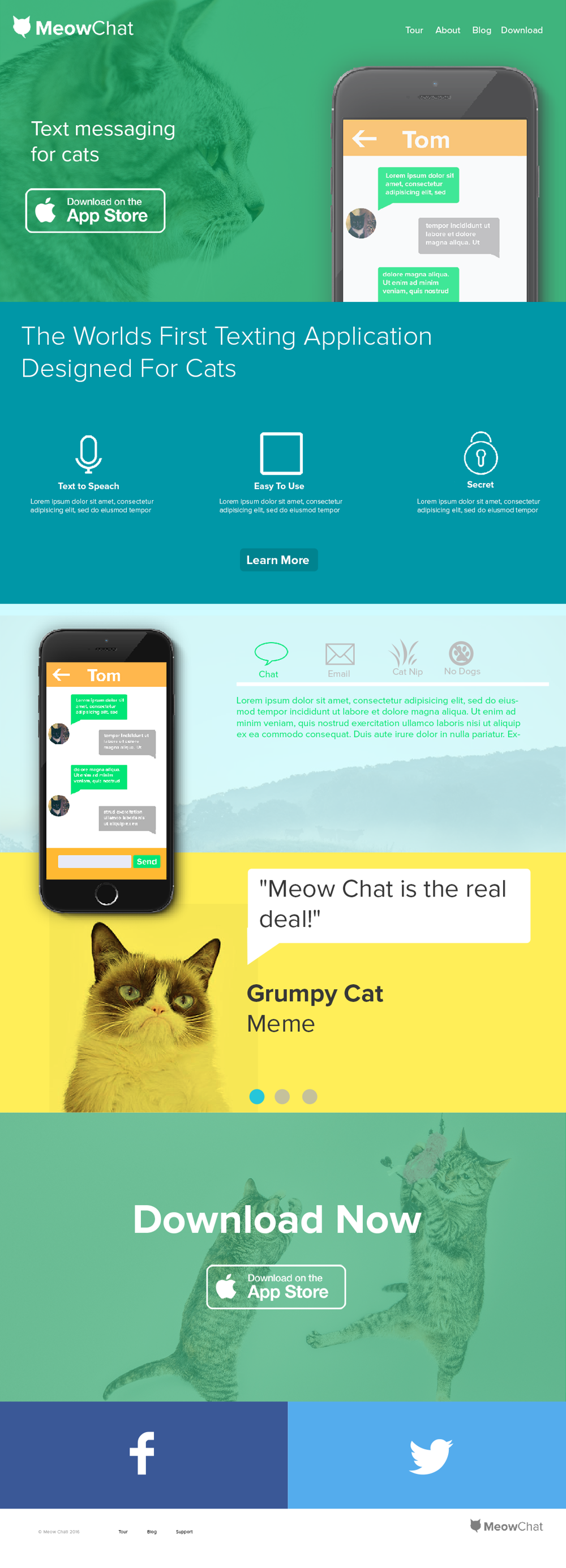 Meow Chat - image 1 - student project