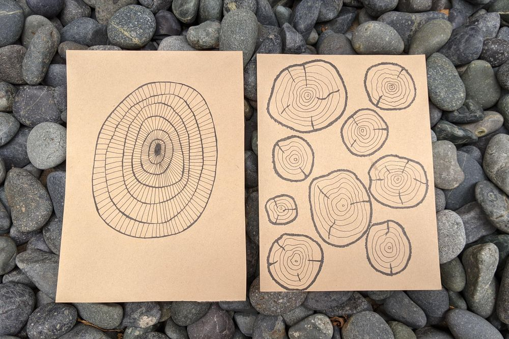 Tree rings meditation - image 2 - student project