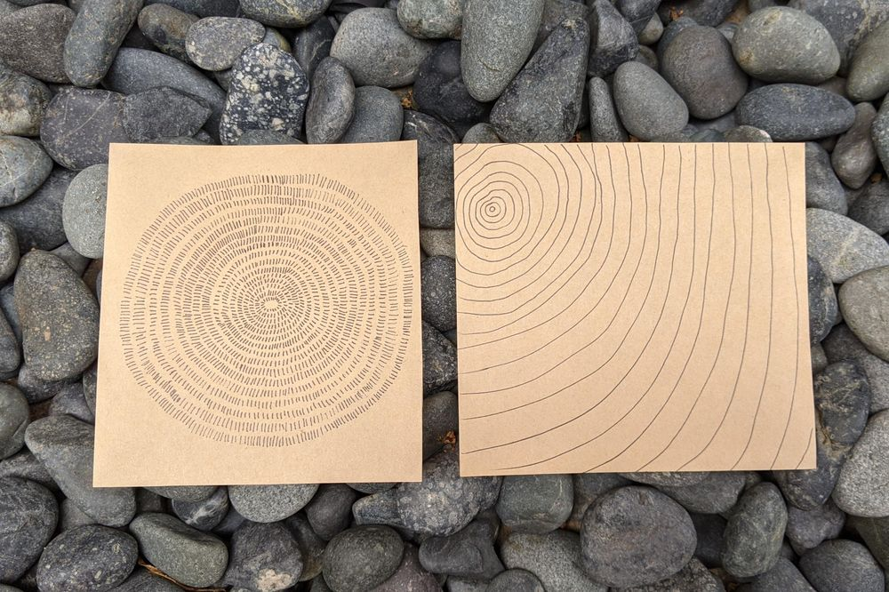 Tree rings meditation - image 1 - student project