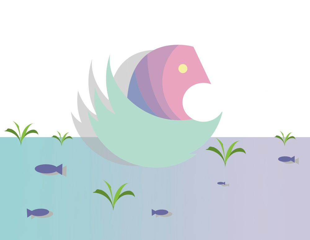 swan in lake - image 1 - student project