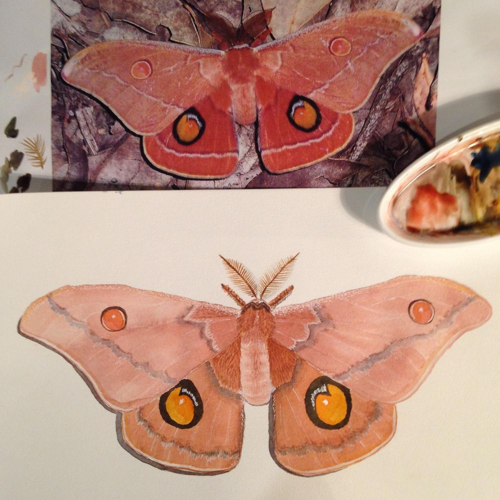 Glazing revisited - image 1 - student project