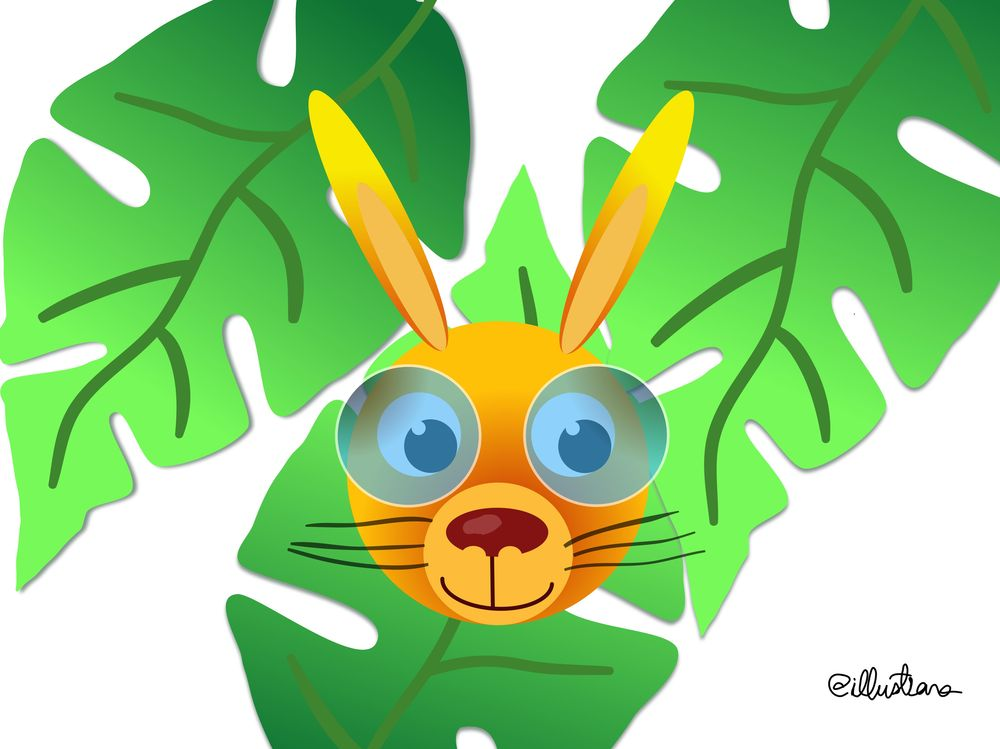 Honey bunny - image 1 - student project