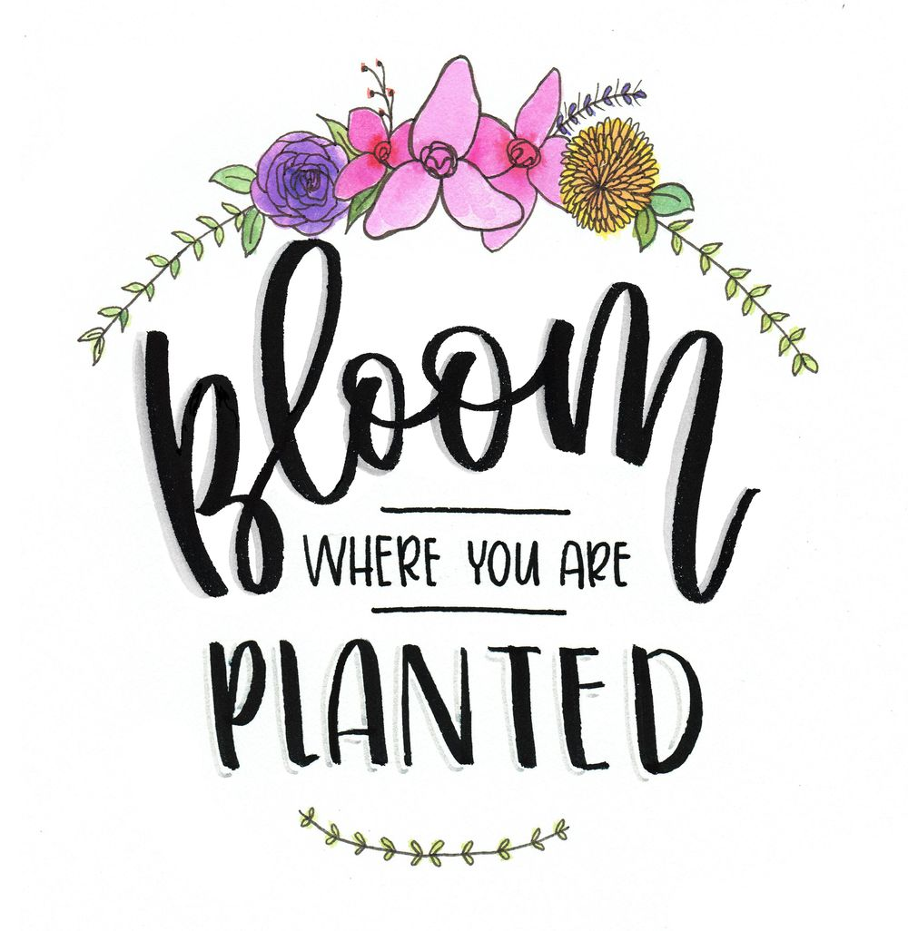 Bloom Where You Are Planted - image 2 - student project