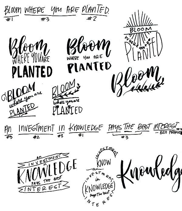Bloom Where You Are Planted - image 1 - student project