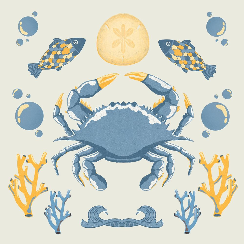 Holy Crab - image 1 - student project
