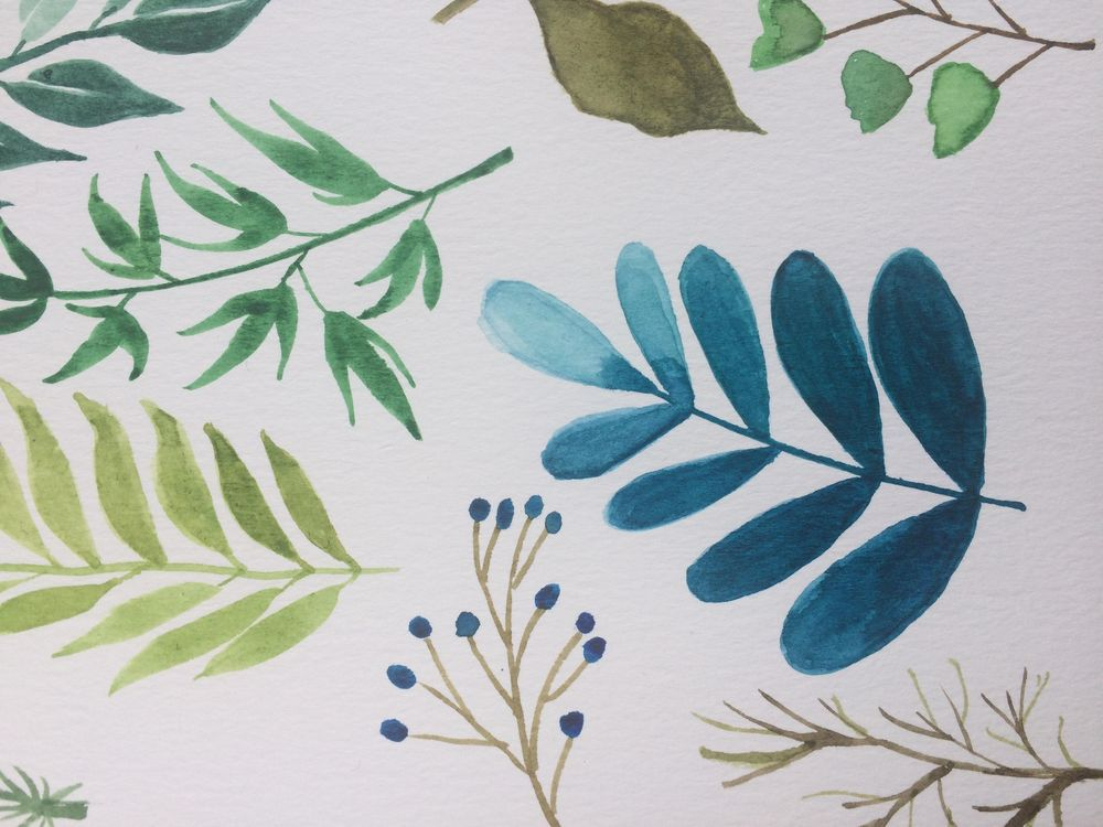 Assorted Leaves - image 2 - student project