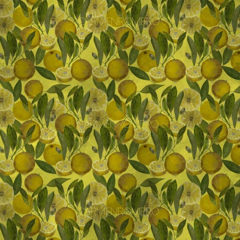 Limones - image 1 - student project
