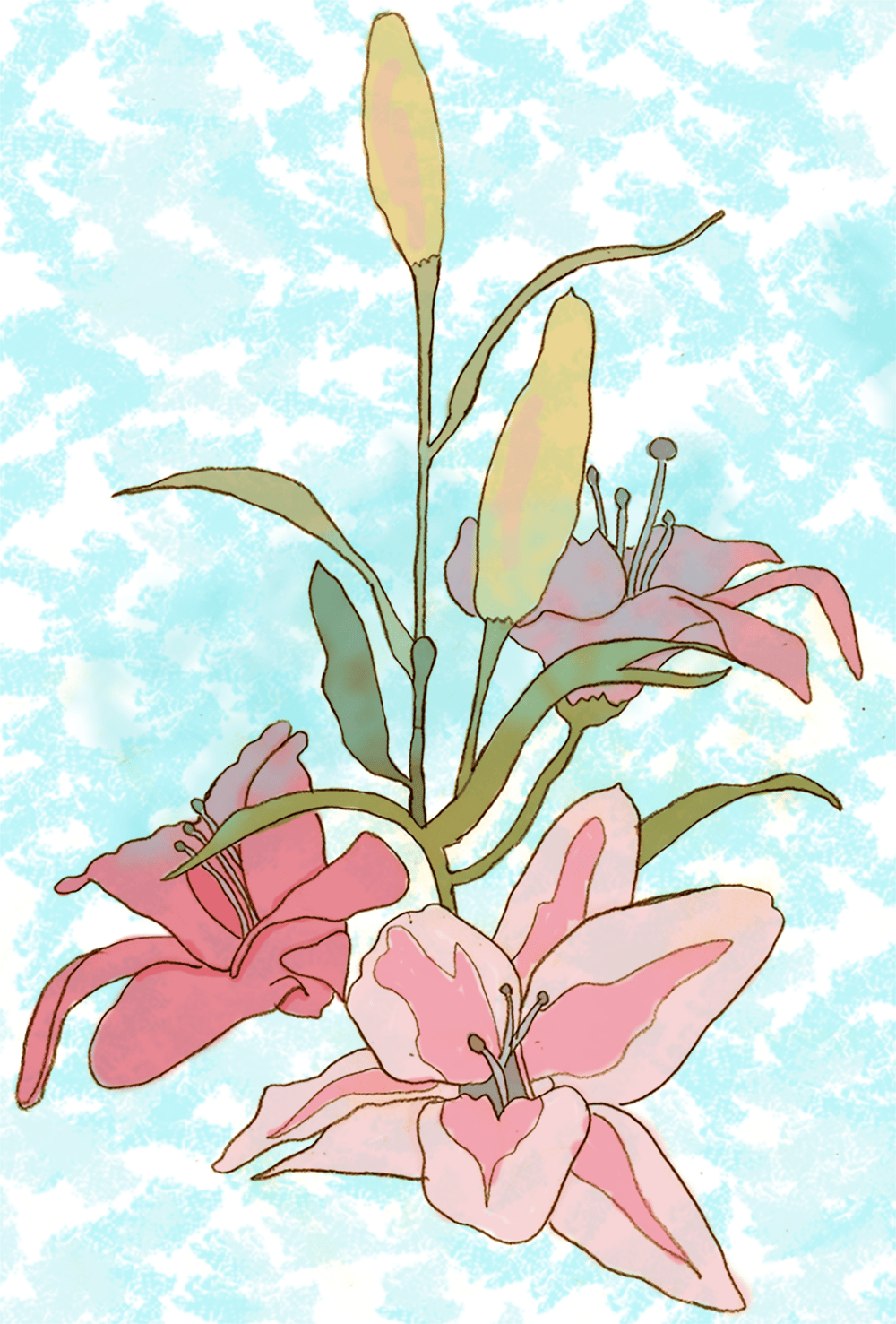 Lilies - image 1 - student project
