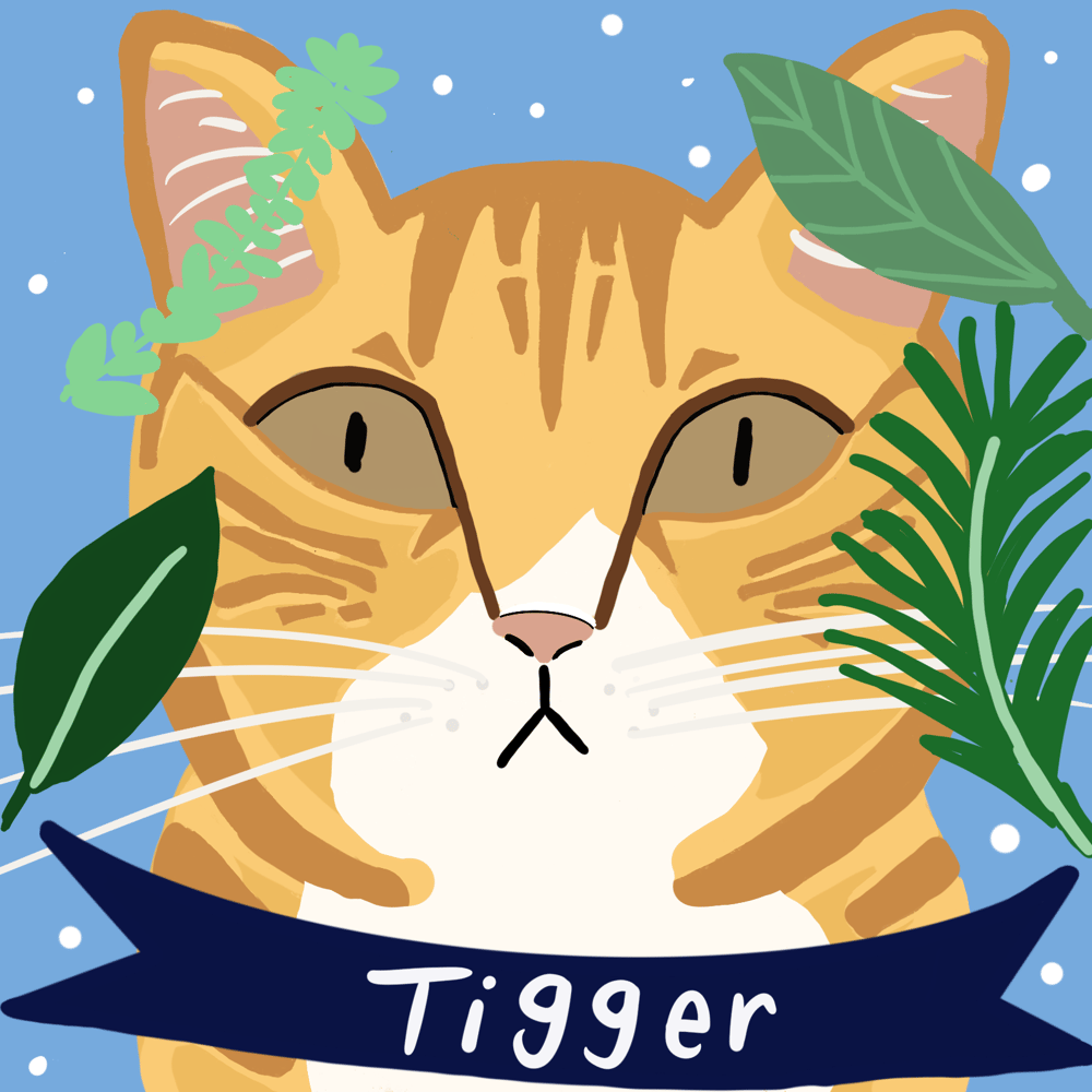 Tigger - image 1 - student project