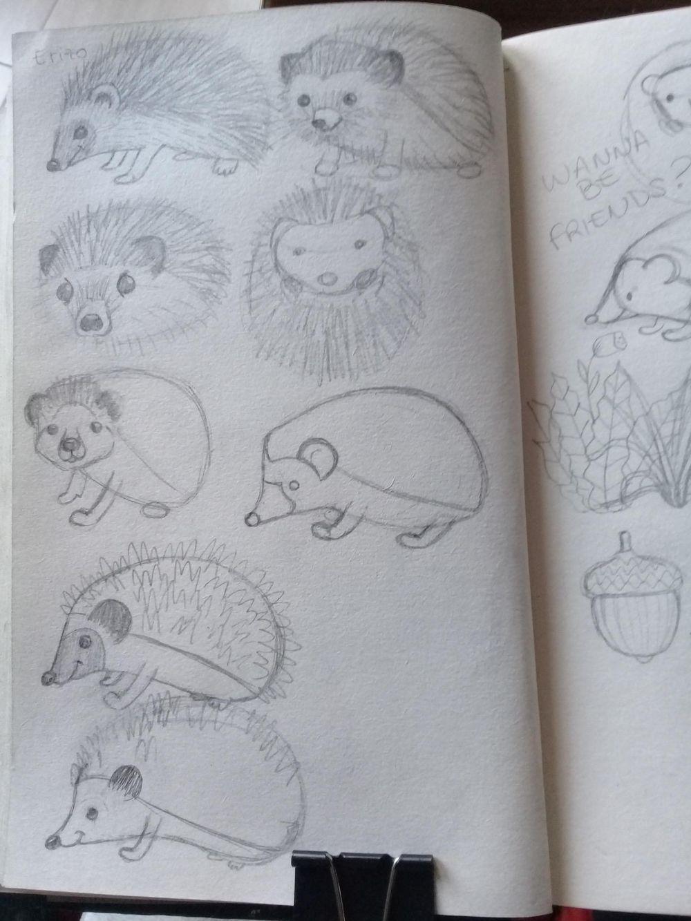 Erizo simpático (Friendly hedgehog) - image 3 - student project