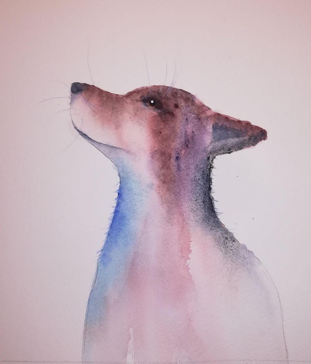 Mr Fox - image 1 - student project