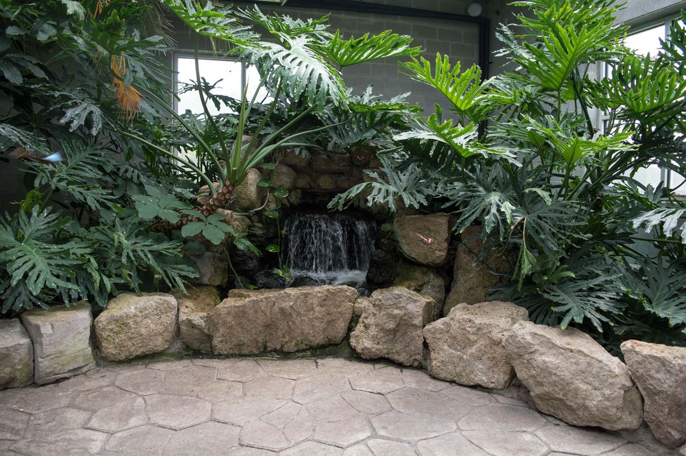 The Cambridge Butterfly Conservatory - Toronto - image 2 - student project