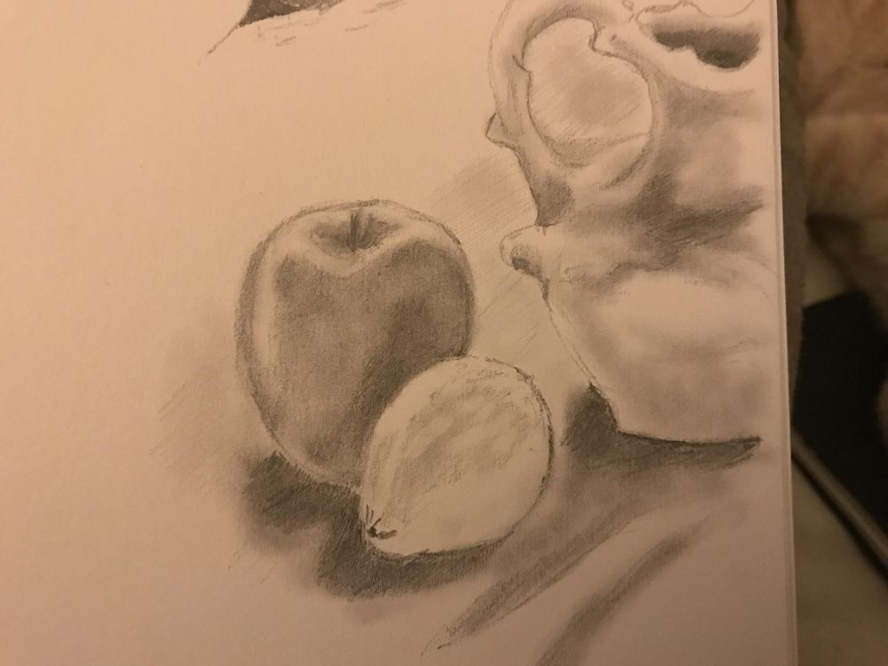 Final still life - image 1 - student project